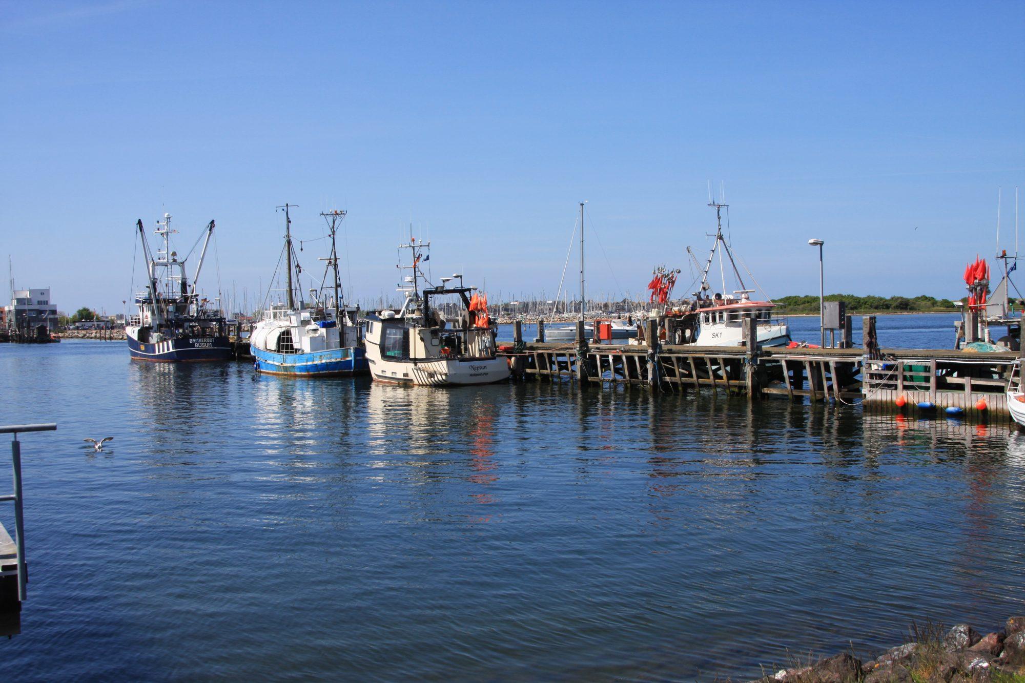 Liegeplätze mit Fischerbooten