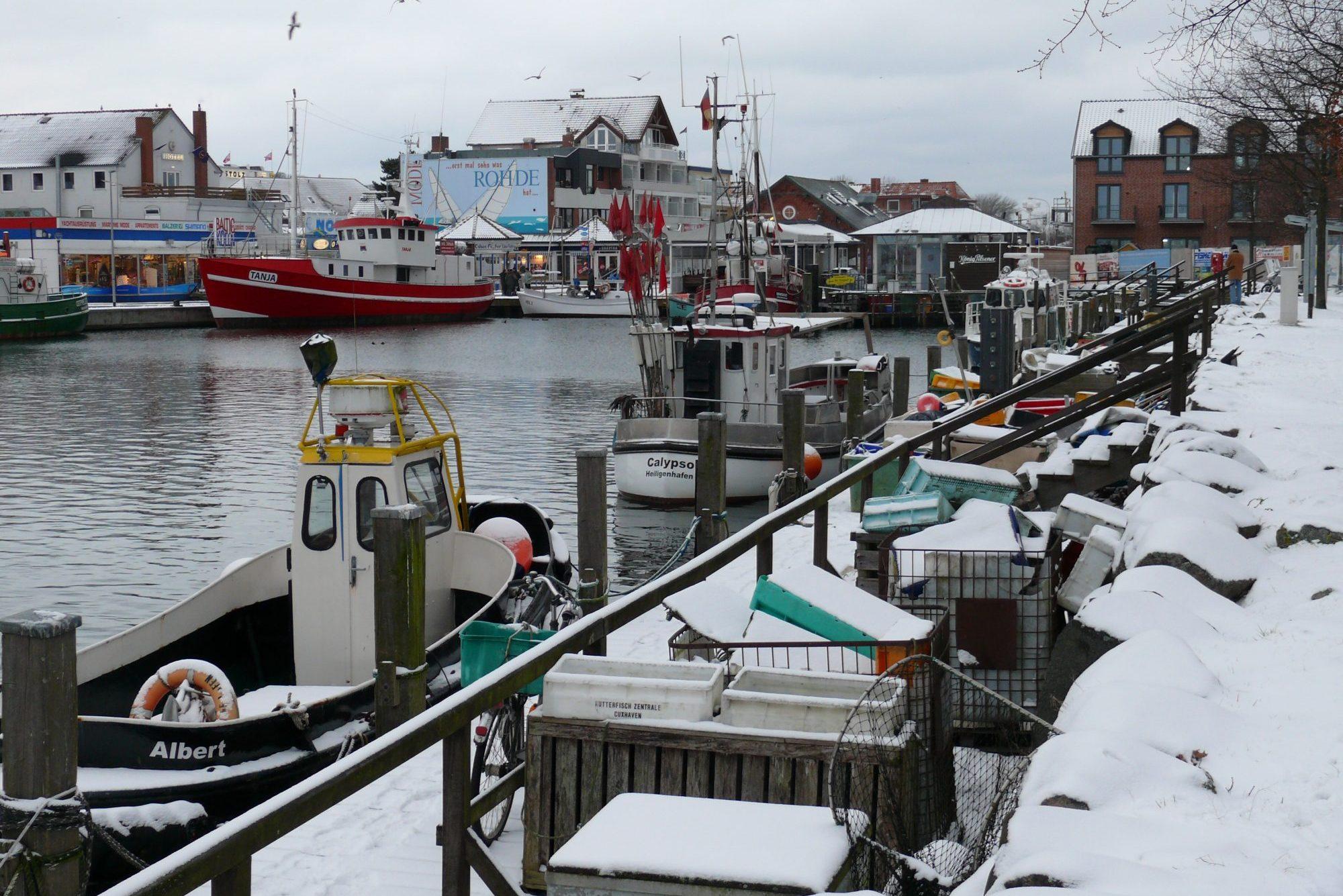 Hafen im Winter